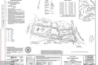 New Bridge Road, Rising Sun, MD 21911 (#CC9660675) :: Pearson Smith Realty