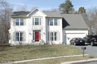193 Forge Court, North East, MD 21901 (#CC9682754) :: Pearson Smith Realty