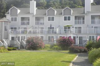 220 Rowland Drive #220, Port Deposit, MD 21904 (#CC9727877) :: Pearson Smith Realty