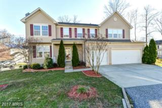 142 Patton Way, Elkton, MD 21921 (#CC9887566) :: Pearson Smith Realty