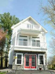 5408 Turkey Point Road, North East, MD 21901 (#CC9920682) :: Pearson Smith Realty
