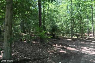 9900 Tall Pines Place, Port Tobacco, MD 20677 (#CH9694460) :: Pearson Smith Realty