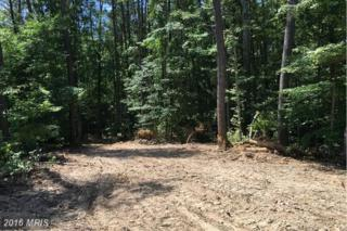 9890 Tall Pines Place, Port Tobacco, MD 20662 (#CH9694565) :: Pearson Smith Realty