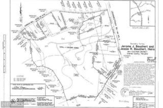 15295 Beuchert Place, Hughesville, MD 20637 (#CH9723104) :: LoCoMusings