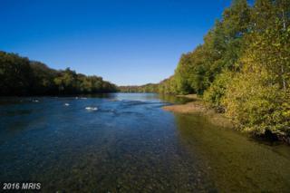 1384 Ellerslie Road, Berryville, VA 22611 (#CL9620743) :: Pearson Smith Realty