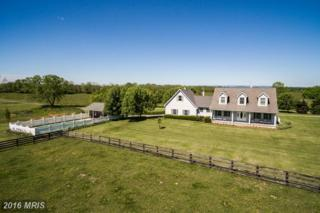 474 Bedrock Lane, Berryville, VA 22611 (#CL9648289) :: Pearson Smith Realty