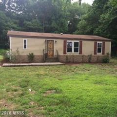 25425 Hill Road, Greensboro, MD 21639 (#CM9738398) :: Pearson Smith Realty