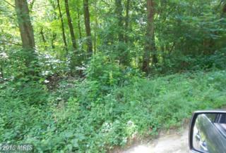 Faulkner Road, Henderson, MD 21640 (#CM9744512) :: Pearson Smith Realty