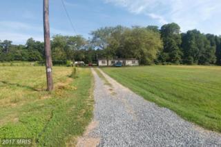 25468 Auction Road, Denton, MD 21629 (#CM9763970) :: LoCoMusings