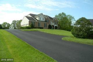 3221 Brinkburn Drive, Finksburg, MD 21048 (#CR9672238) :: Pearson Smith Realty