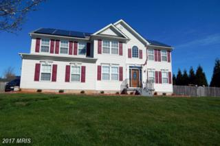 158 Wampee Court, Westminster, MD 21157 (#CR9814235) :: Pearson Smith Realty