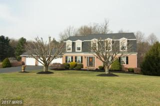 2136 Herbert Avenue, Westminster, MD 21157 (#CR9818319) :: Pearson Smith Realty