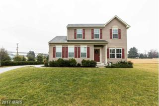 2641 Cletus Drive, Manchester, MD 21102 (#CR9840227) :: Pearson Smith Realty