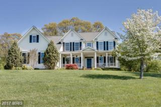 476 Calvins Drive, Sykesville, MD 21784 (#CR9868531) :: Pearson Smith Realty