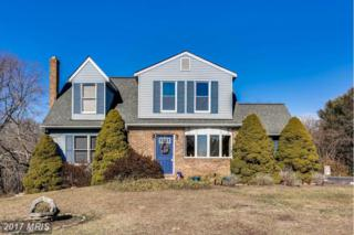 5207 Bartholow Road, Eldersburg, MD 21784 (#CR9882089) :: Pearson Smith Realty