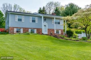 1615 Terrace Drive, Westminster, MD 21157 (#CR9938956) :: Pearson Smith Realty