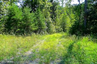 0 Lee Highway E, Amissville, VA 20106 (#CU9754501) :: Pearson Smith Realty