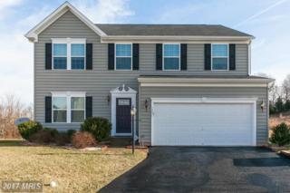 12031 Live Oak Drive, Culpeper, VA 22701 (#CU9833411) :: LoCoMusings