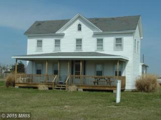 1641 Steamboat Wharf Road, Fishing Creek, MD 21634 (#DO7654155) :: Pearson Smith Realty