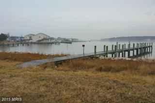 1240 Horse Point Road, Fishing Creek, MD 21634 (#DO8566431) :: Pearson Smith Realty