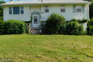 3610 Hicksburg Road, East New Market, MD 21631 (#DO9679519) :: Pearson Smith Realty