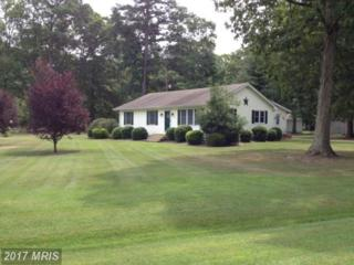 3315 Woodland Acres Road, East New Market, MD 21631 (#DO9724623) :: LoCoMusings