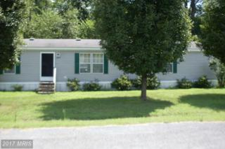 6237 Rossing, Hurlock, MD 21643 (#DO9742734) :: Pearson Smith Realty