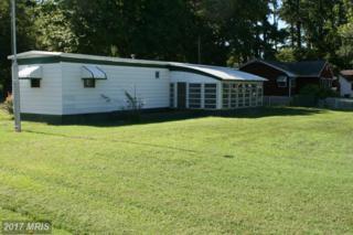 5307 River Drive, Cambridge, MD 21613 (#DO9771004) :: Pearson Smith Realty