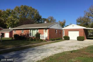 105 Linthicum Drive, Cambridge, MD 21613 (#DO9807289) :: Pearson Smith Realty