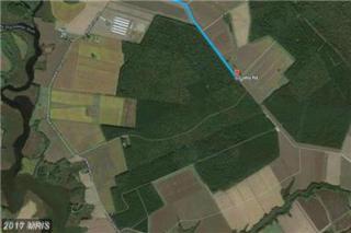 Maple Dam Road, Cambridge, MD 21613 (#DO9832833) :: LoCoMusings