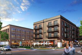 600 Amelia Street #201, Fredericksburg, VA 22401 (#FB9778020) :: Pearson Smith Realty