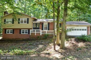 7 Peace Pipe Lane, Fredericksburg, VA 22401 (#FB9783971) :: LoCoMusings