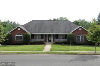 100 Chase Lane, Fredericksburg, VA 22401 (#FB9925073) :: Pearson Smith Realty