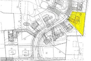 Lot #23 Whippet Trail, Waynesboro, PA 17268 (#FL8310370) :: Pearson Smith Realty