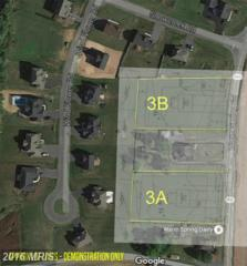 Warm Spring Road, Chambersburg, PA 17202 (#FL9661996) :: Pearson Smith Realty