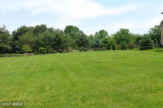 LOT 1 Diopside Drive, Chambersburg, PA 17201 (#FL9667606) :: Pearson Smith Realty