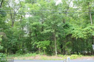 13045 Old Pen Mar Road, Waynesboro, PA 17268 (#FL9683601) :: LoCoMusings