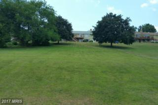 Iroquois Trail, Waynesboro, PA 17268 (#FL9755511) :: LoCoMusings