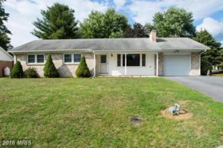 307 Terrace Drive, Fayetteville, PA 17222 (#FL9762855) :: Pearson Smith Realty