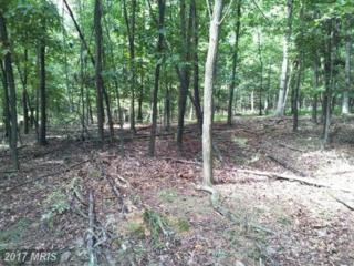 Stumpy Lane, Fort Loudon, PA 17224 (#FL9775352) :: Pearson Smith Realty