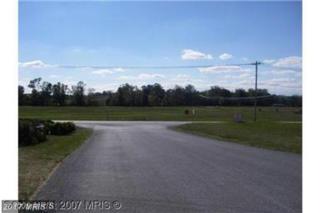 9801 Amsterdam Road, Waynesboro, PA 17268 (#FL9800431) :: LoCoMusings