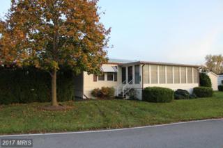 5500-32C Lincoln Way E, Fayetteville, PA 17222 (#FL9801808) :: LoCoMusings