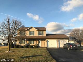 1872 Wood Duck Drive E, Chambersburg, PA 17202 (#FL9806388) :: Pearson Smith Realty
