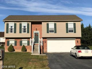1417 Mallard Drive E, Chambersburg, PA 17202 (#FL9807261) :: Pearson Smith Realty