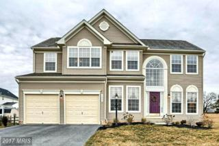 3887 Rolling Hills Drive, Greencastle, PA 17225 (#FL9860376) :: Pearson Smith Realty