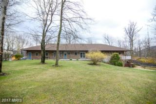 3453 Acacia Trail, Fort Loudon, PA 17224 (#FL9893664) :: Pearson Smith Realty