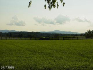 6 Chattins Run Lane, Delaplane, VA 20144 (#FQ7683518) :: LoCoMusings