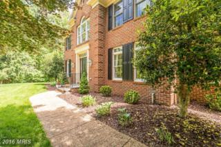 6823 Sandstone Court, Warrenton, VA 20187 (#FQ9670340) :: Pearson Smith Realty