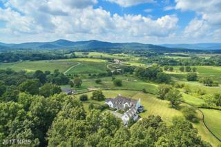 3677 Grove Lane, Delaplane, VA 20144 (#FQ9766791) :: Pearson Smith Realty