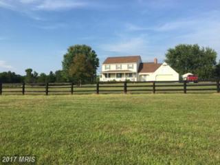 14245 Goldvein Road, Goldvein, VA 22720 (#FQ9771557) :: Pearson Smith Realty